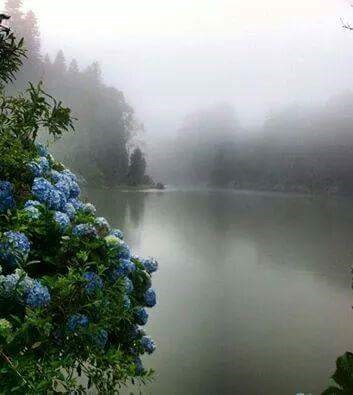 Lago Negro. Gramado